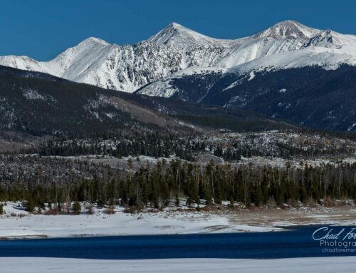 Rocky Mountain Bluebird Day